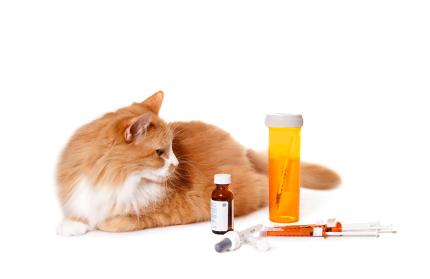 диабет отказ от лечения